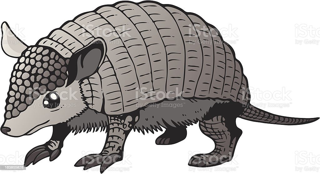 armadillo peludo royalty free stock vector art