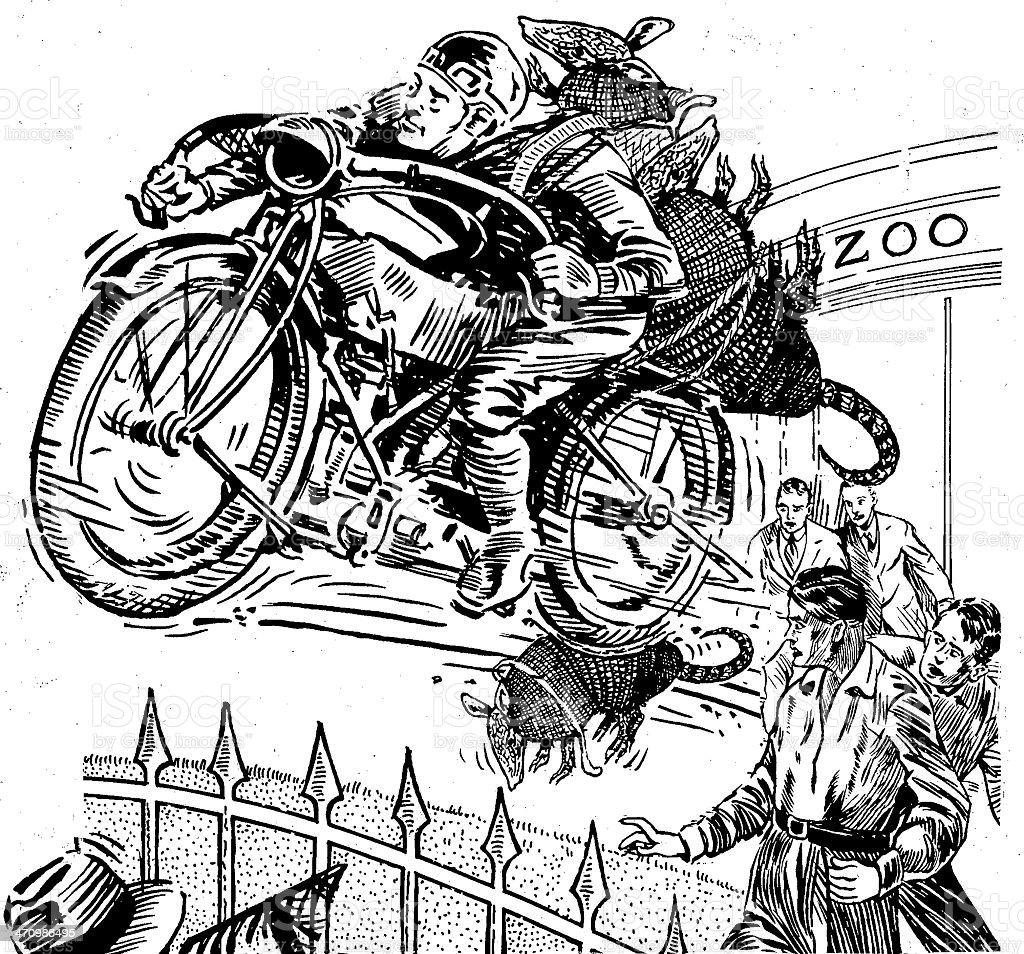 Armadillo theft royalty-free stock vector art
