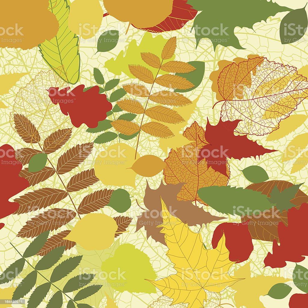 Autumn background with leave royalty-free stock vector art