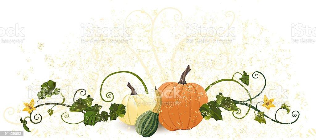 Autumn Harvest Vine vector art illustration