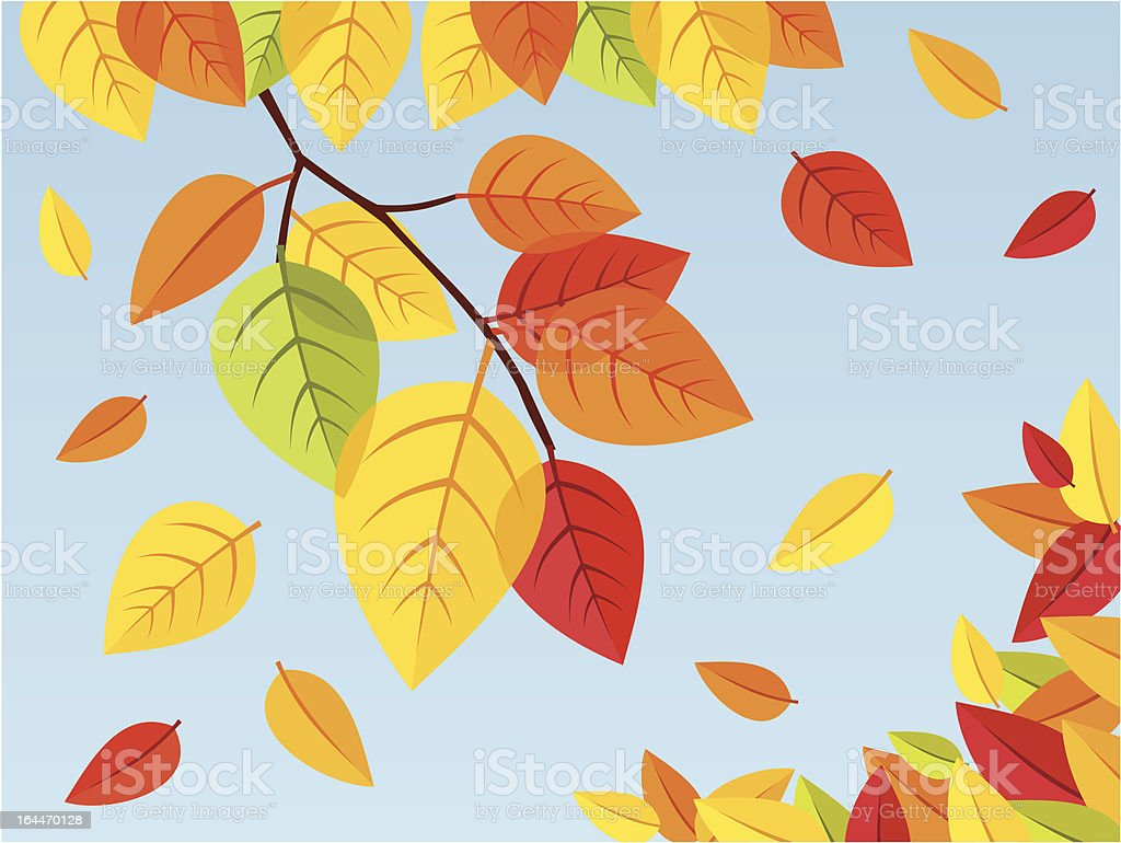 Autumn leaves on a blue sky background. Vector illustration. vector art illustration