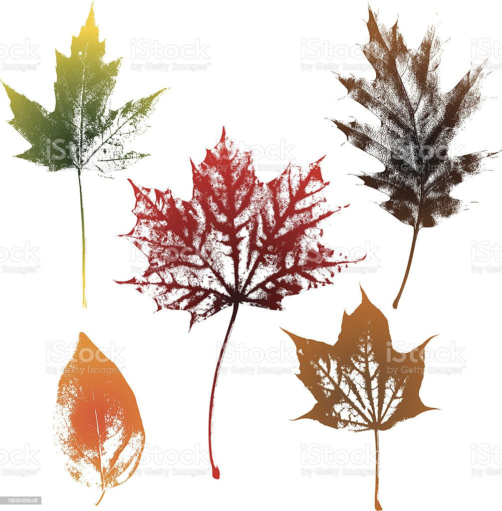 Autumn leaves texture royalty-free stock vector art