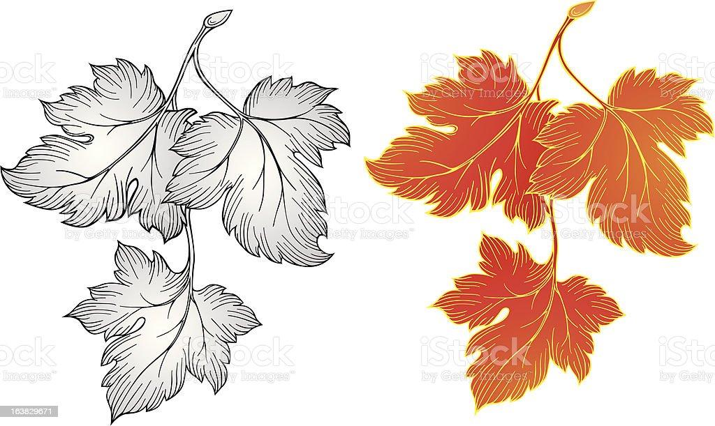 Autumn leaves vector royalty-free stock vector art