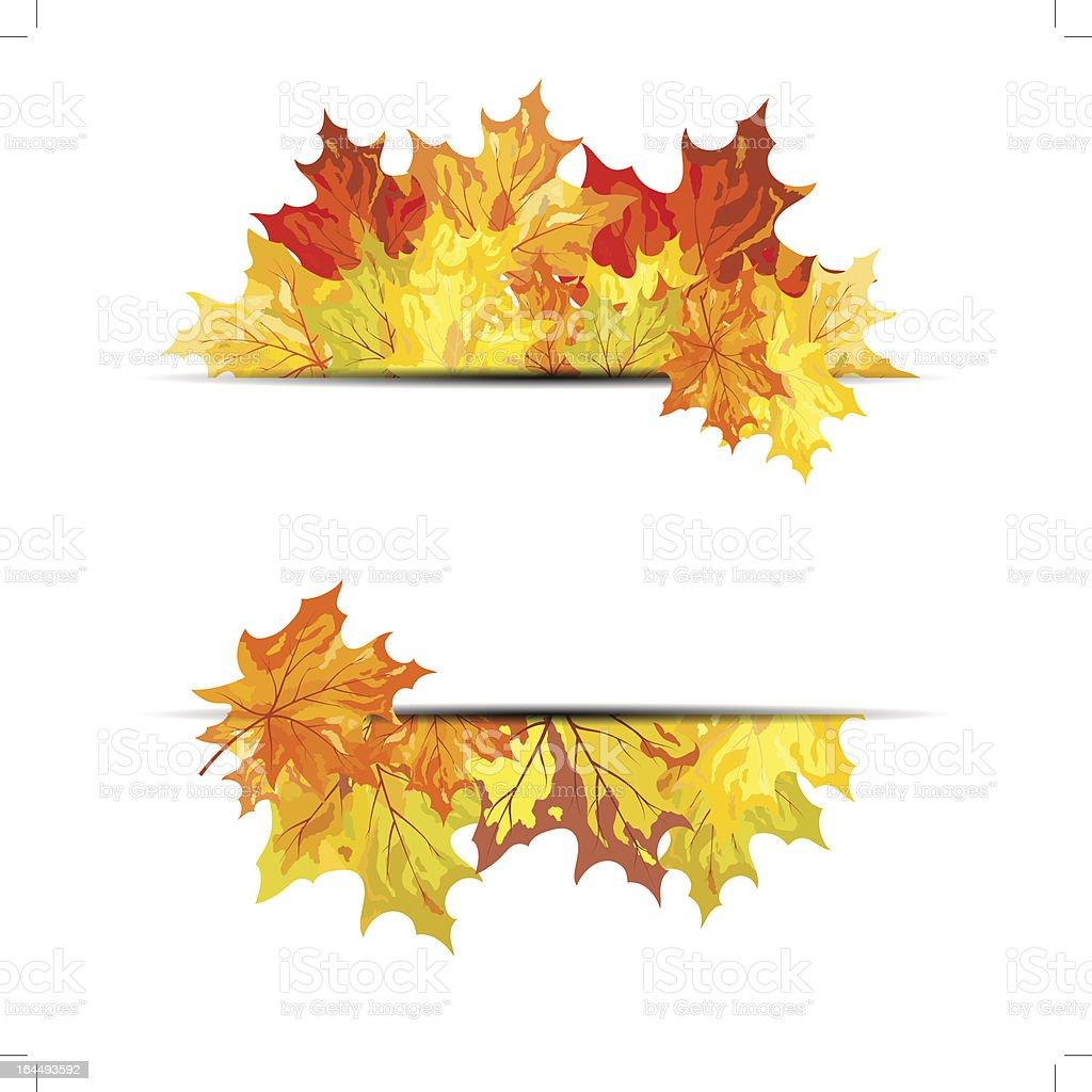 Autumn maple royalty-free stock vector art