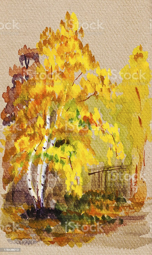 autumn view with yellow leaves birch royalty-free stock vector art