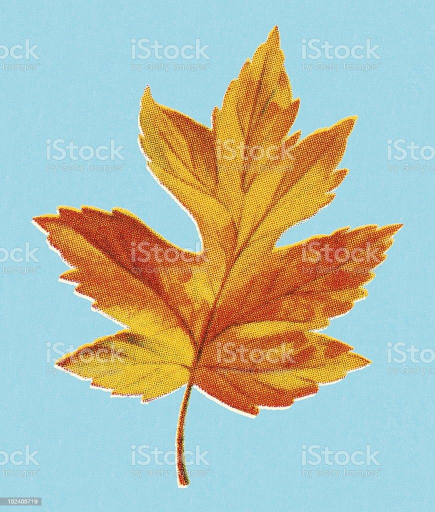 Autumn Yellow Leaf royalty-free stock vector art