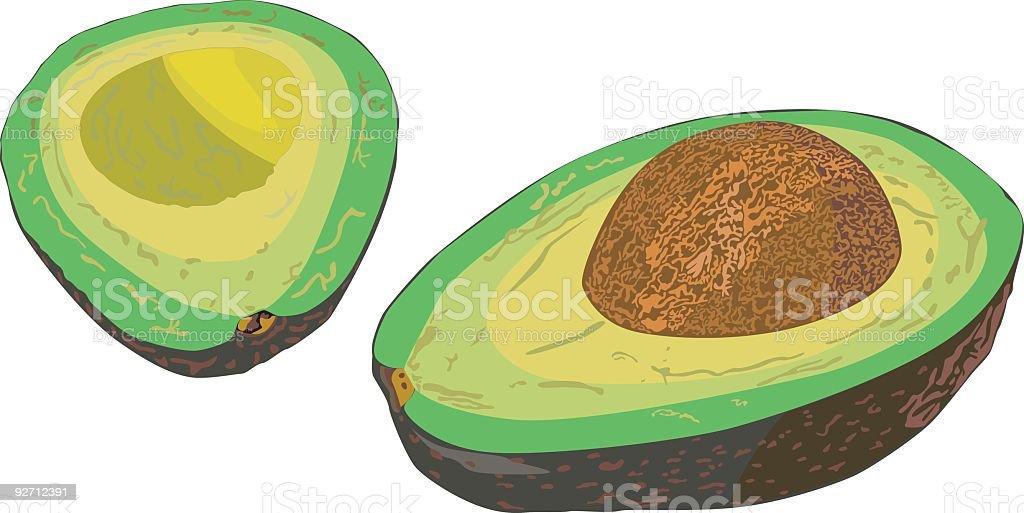 Avocado (Vector) royalty-free stock vector art