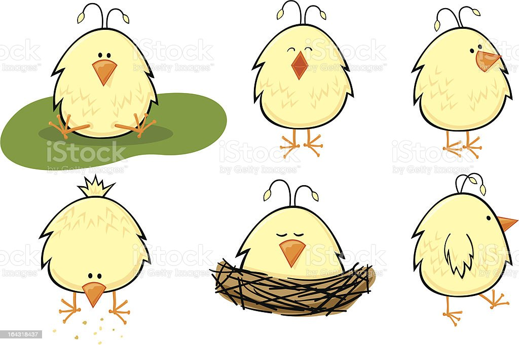 Baby Chick set vector art illustration