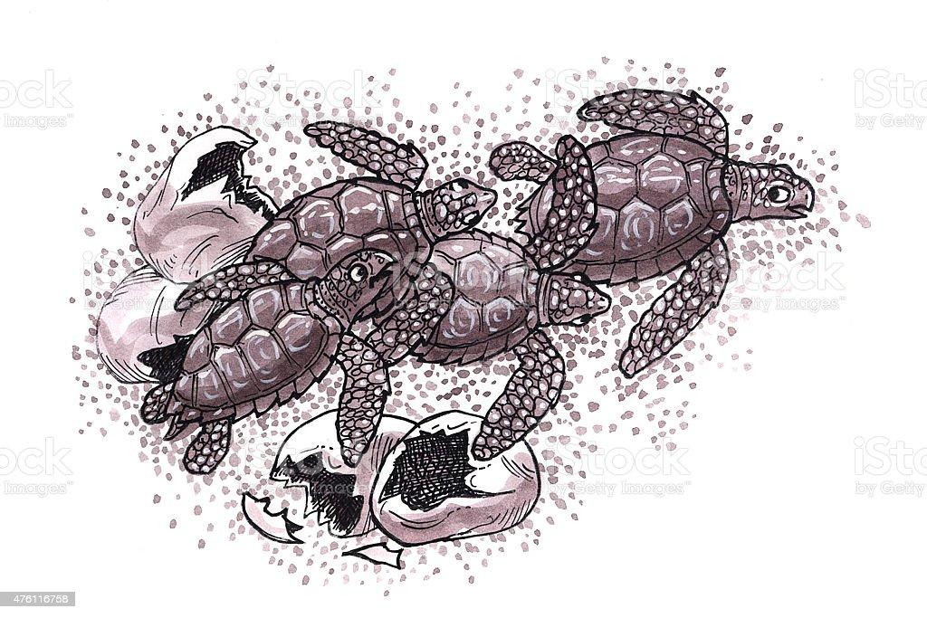 Baby-Schildkröten (Comic) Lizenzfreies vektor illustration