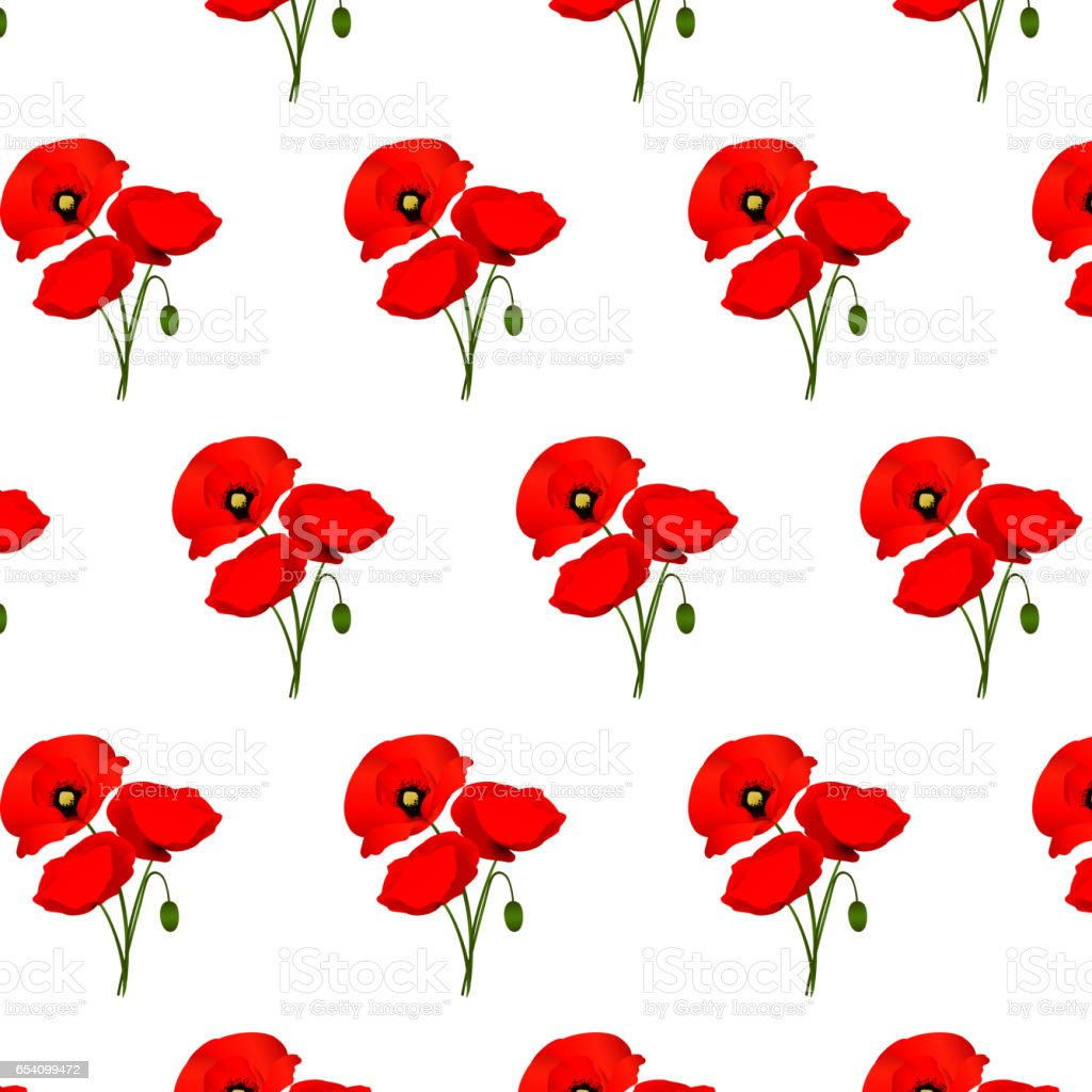 Background with poppies flowers vector art illustration