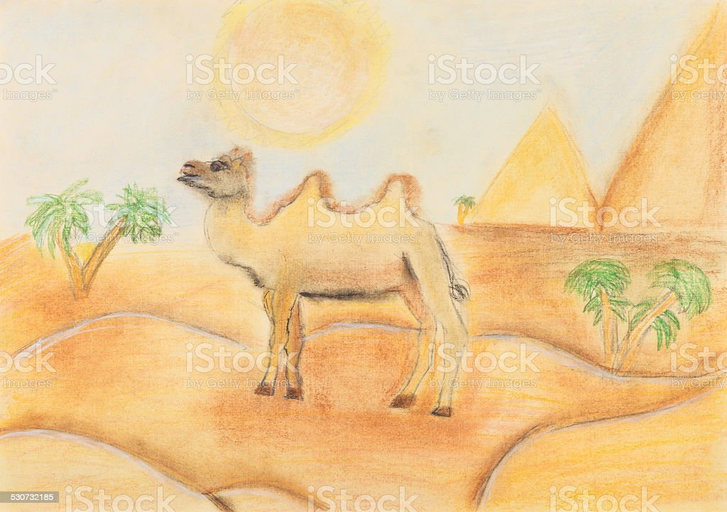 bactrian camel in hot desert vector art illustration