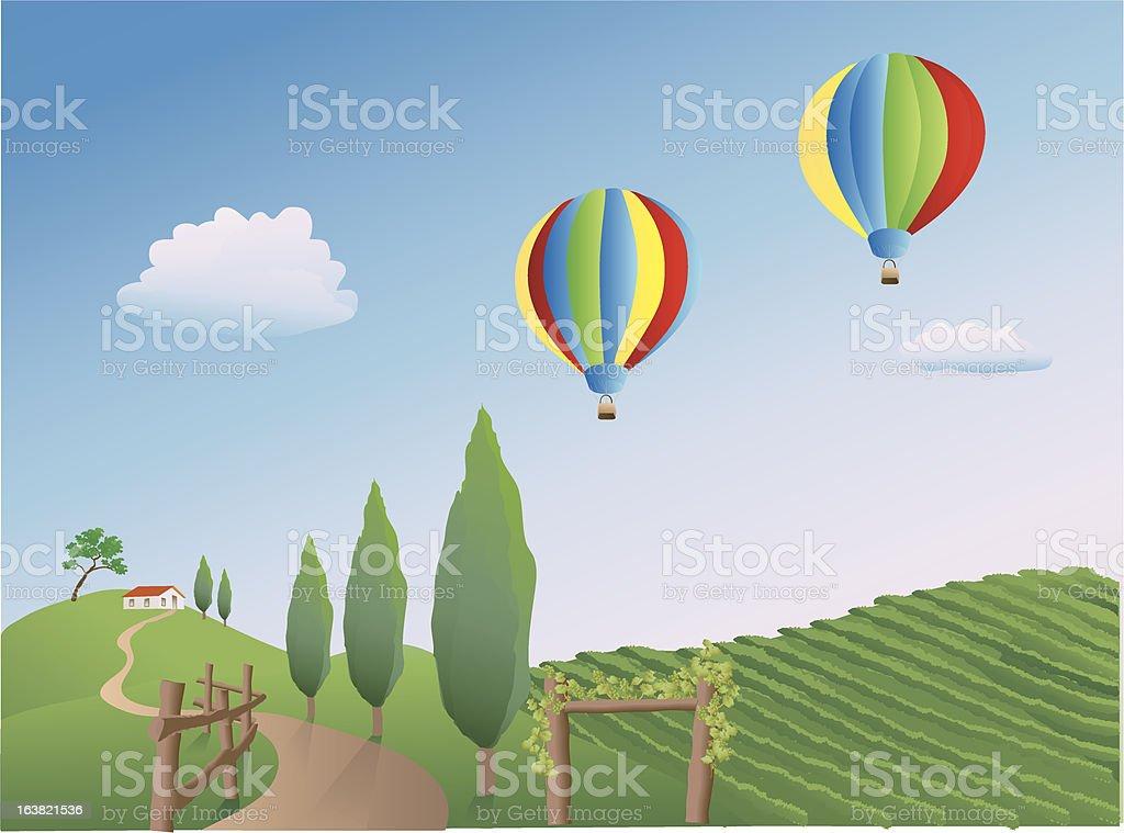 Balloons over a Vineyard vector art illustration