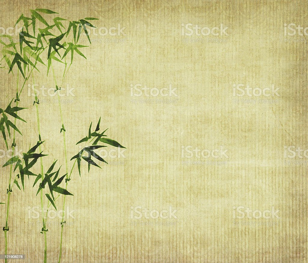 bamboo on old grunge paper texture background vector art illustration