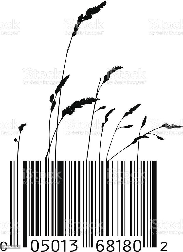 Bar Code Grass royalty-free stock vector art