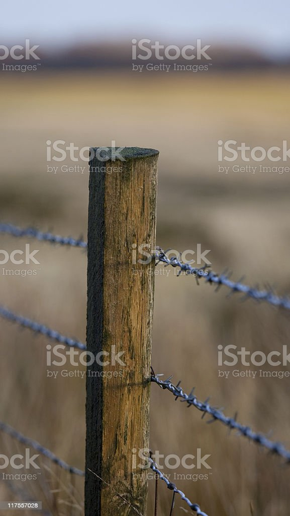 Barbed wire fence vector art illustration
