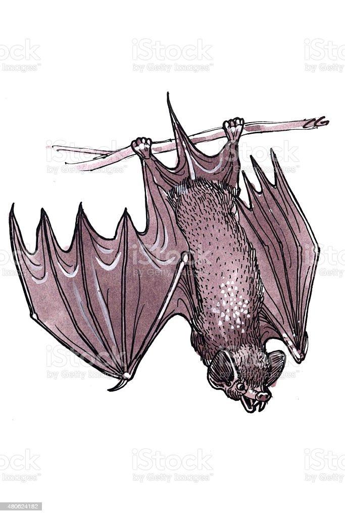 Bat (Comic Lizenzfreies vektor illustration