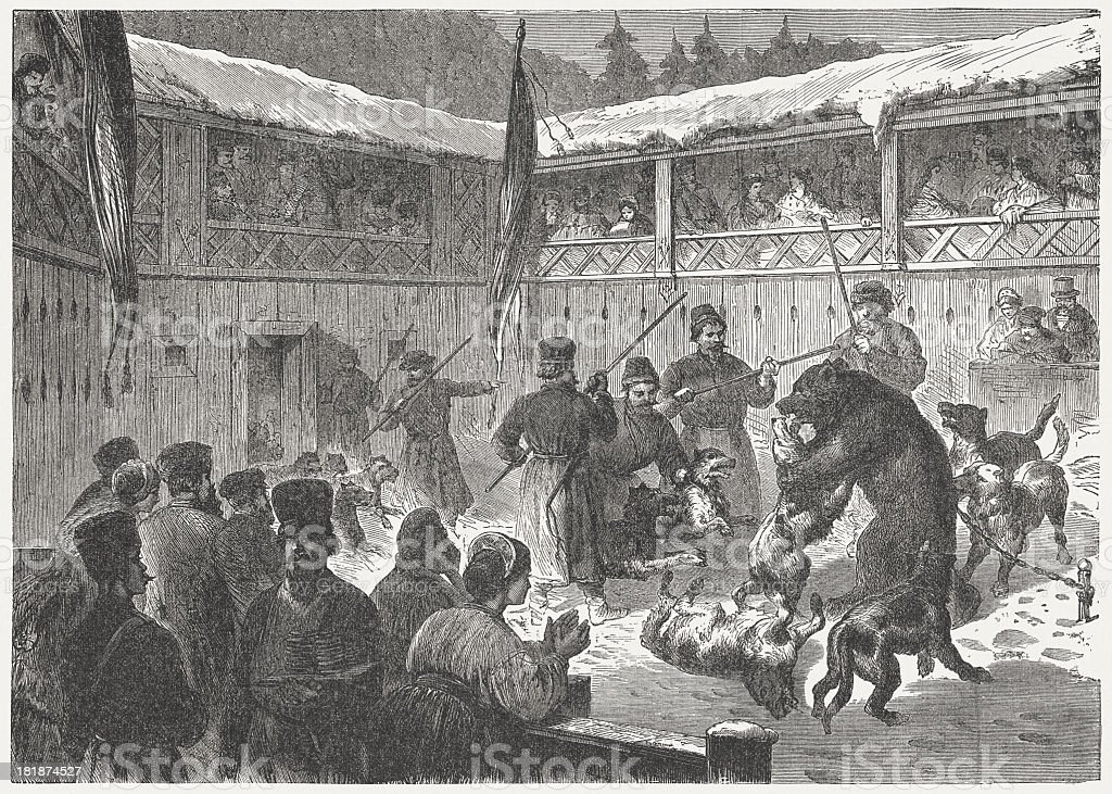 Bear baiting by dogs in Moscow, wood engraving, published in 1872 royalty-free stock vector art