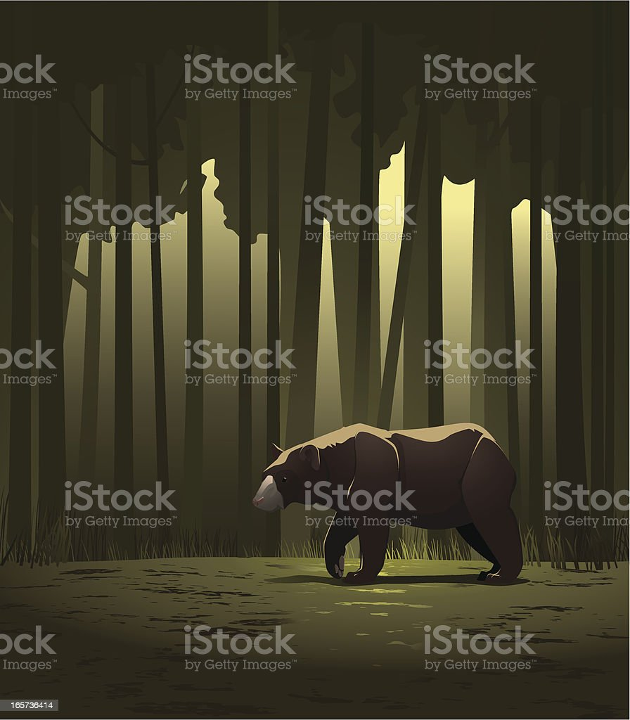 Bear in a forest vector art illustration
