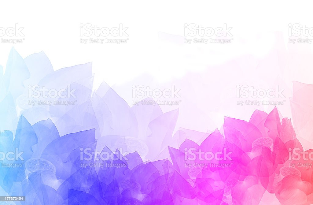 beautiful background with colorful flowers vector art illustration