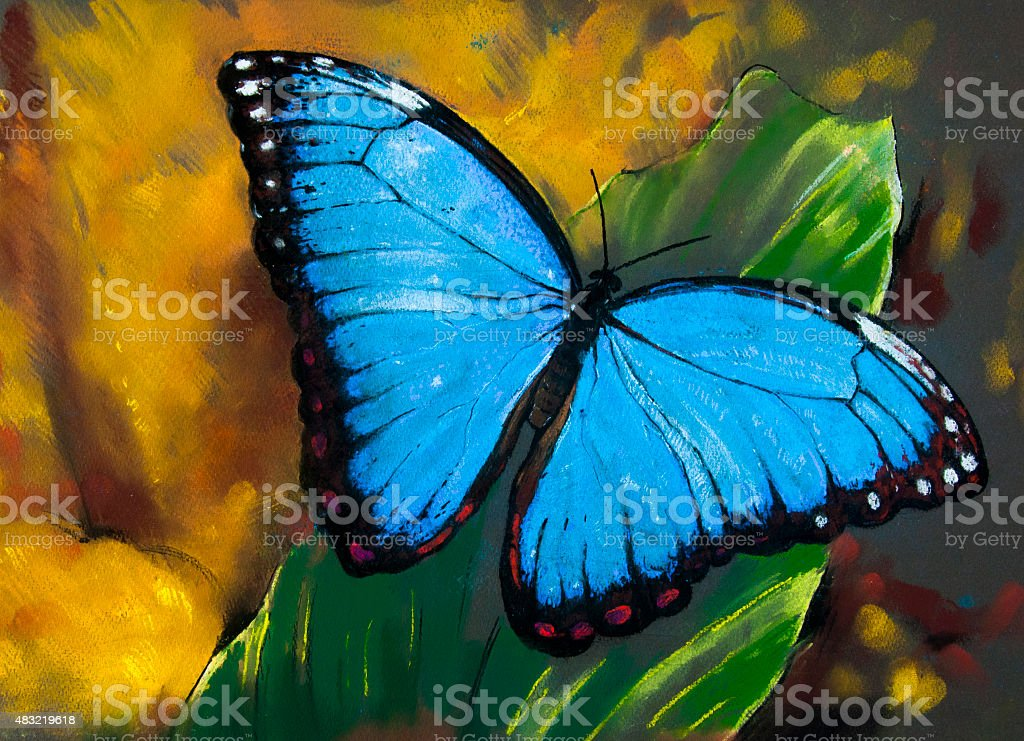 Beautiful butterfly on a leaf. vector art illustration