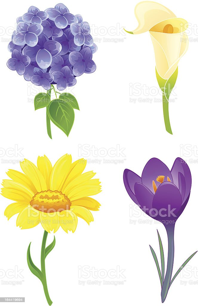 Beautiful flowers set two royalty-free stock vector art