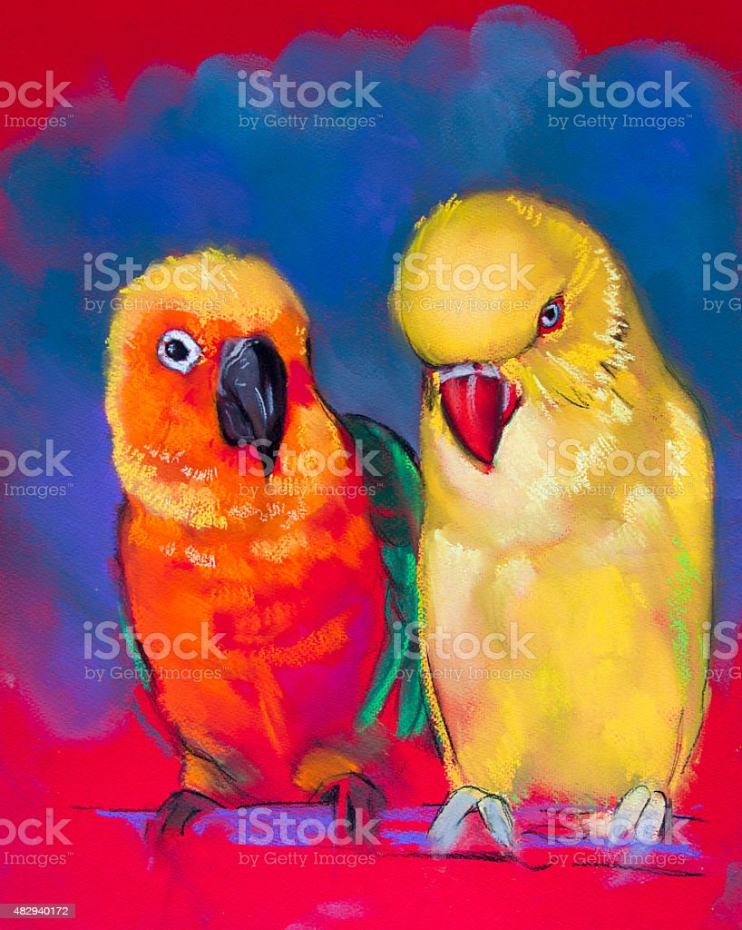 Beautiful parrots on a red background vector art illustration