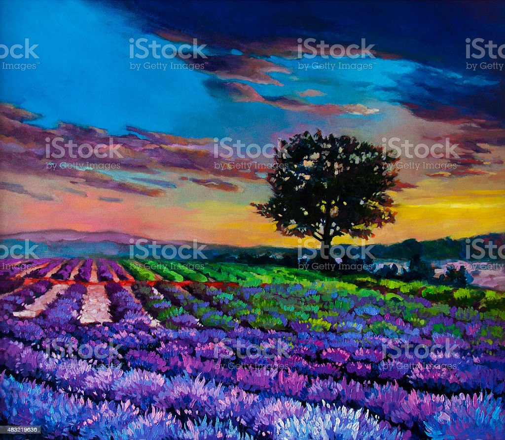 Beautiful sunset over lavender field. vector art illustration