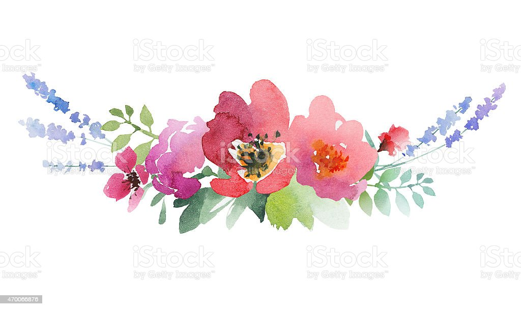 Beautiful watercolor design label with roses, anemone, lavender and leaves vector art illustration