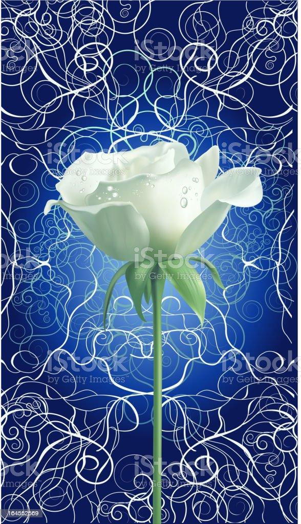 Beautiful white rose vector art illustration