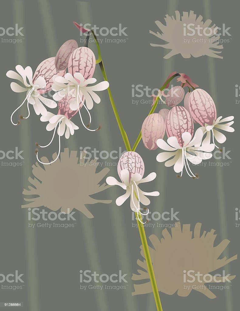 Beautiful Wild Flower royalty-free stock vector art