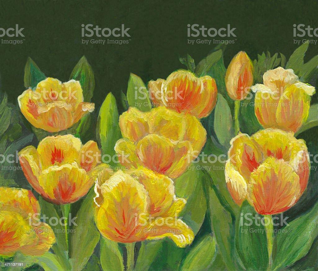 Schönen gelben Tulpen im Garten Lizenzfreies vektor illustration