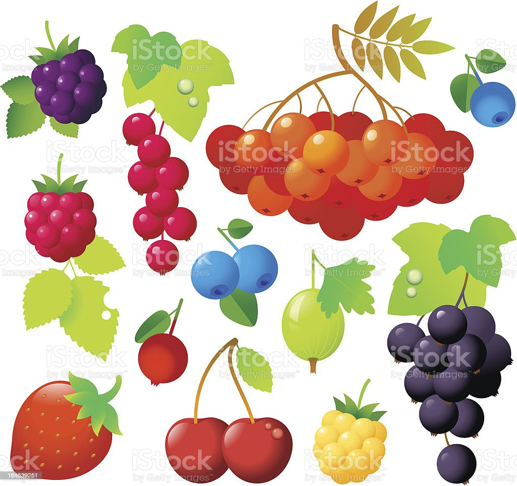 Berry Icons royalty-free stock vector art