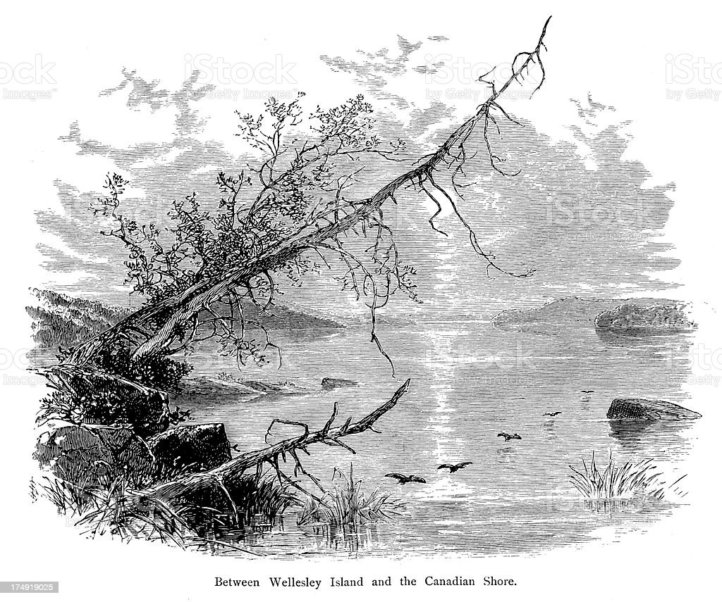 Between Wellesley Island and the Canadian Shore vector art illustration