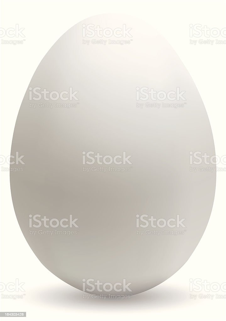 Big white egg vector art illustration