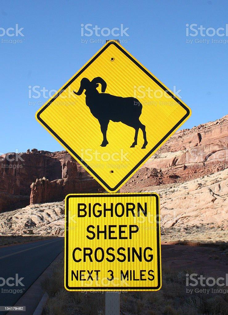 Bighorn Crossing Sign royalty-free stock vector art