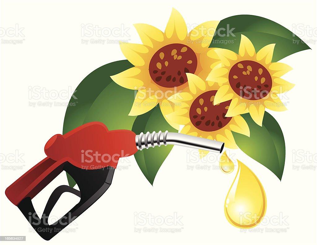 bio fuel- sunflower royalty-free stock vector art
