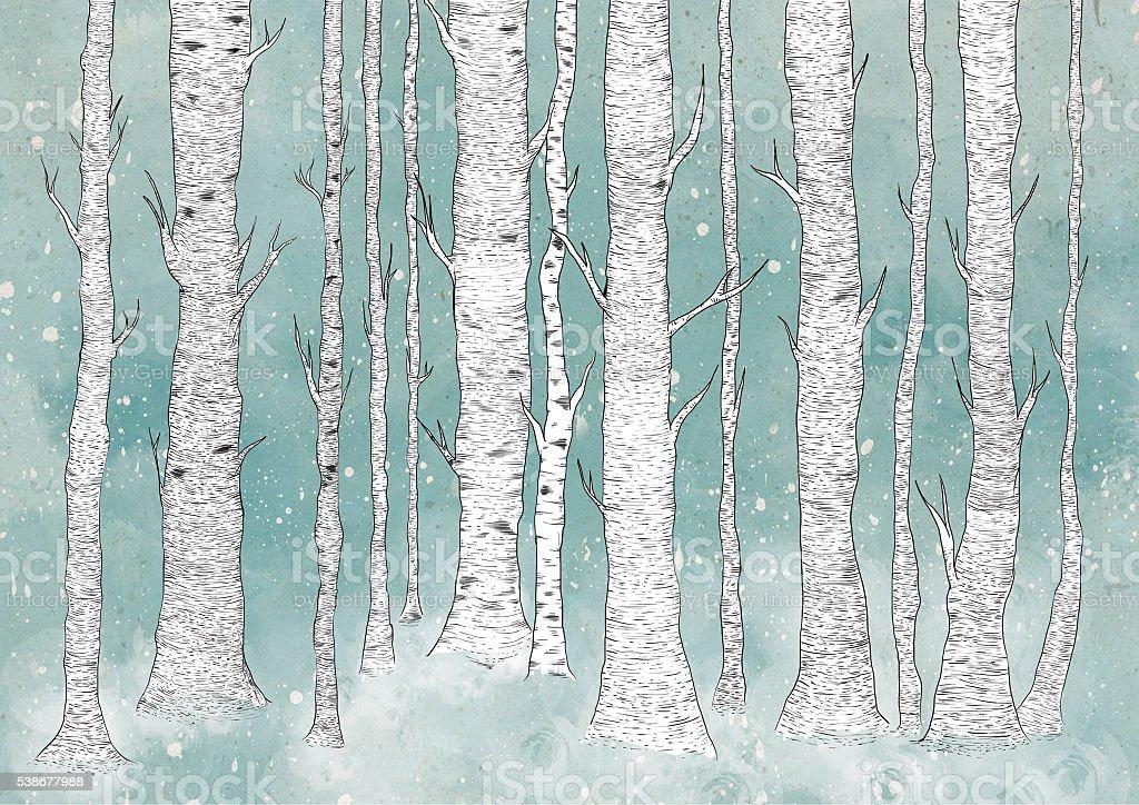 Birch Forest vector art illustration