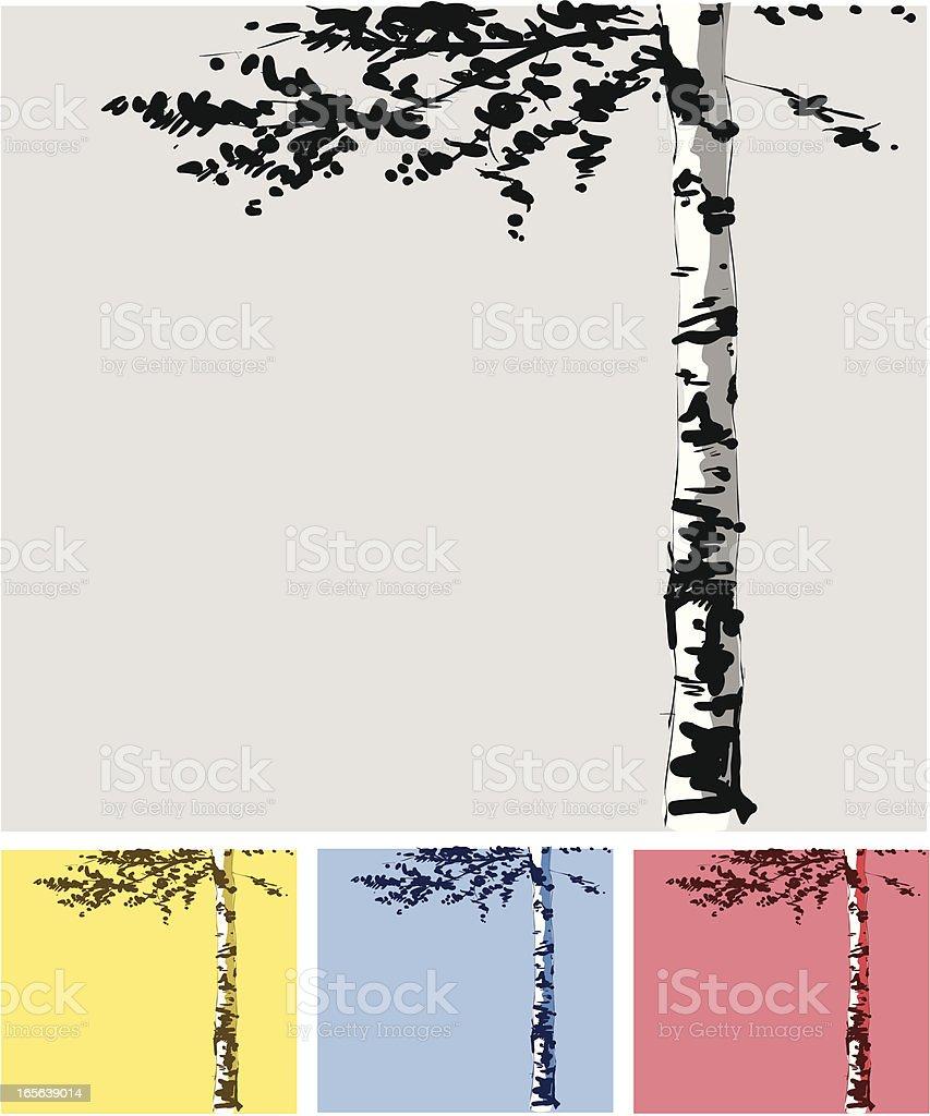 Birch Tree vector art illustration