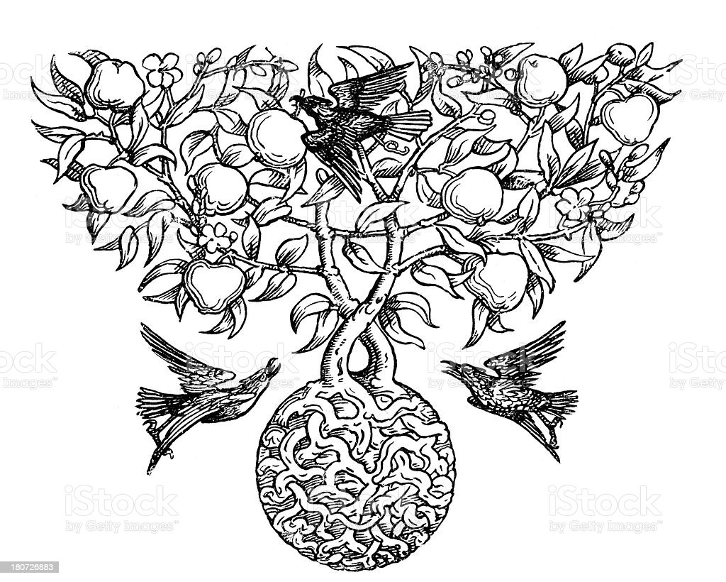 Bird and Apple Tree Motif royalty-free stock vector art