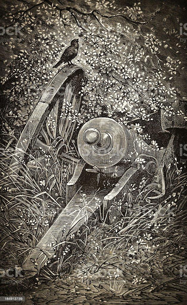 Bird and Cannon - Victorian Steel Engraving vector art illustration