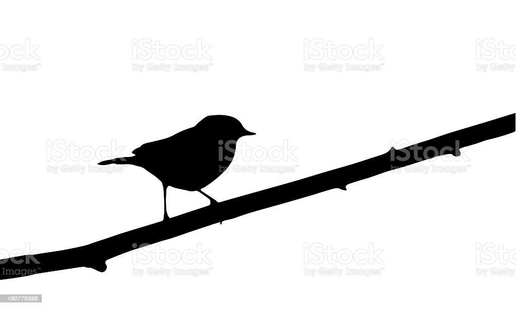 bird on branch vector art illustration