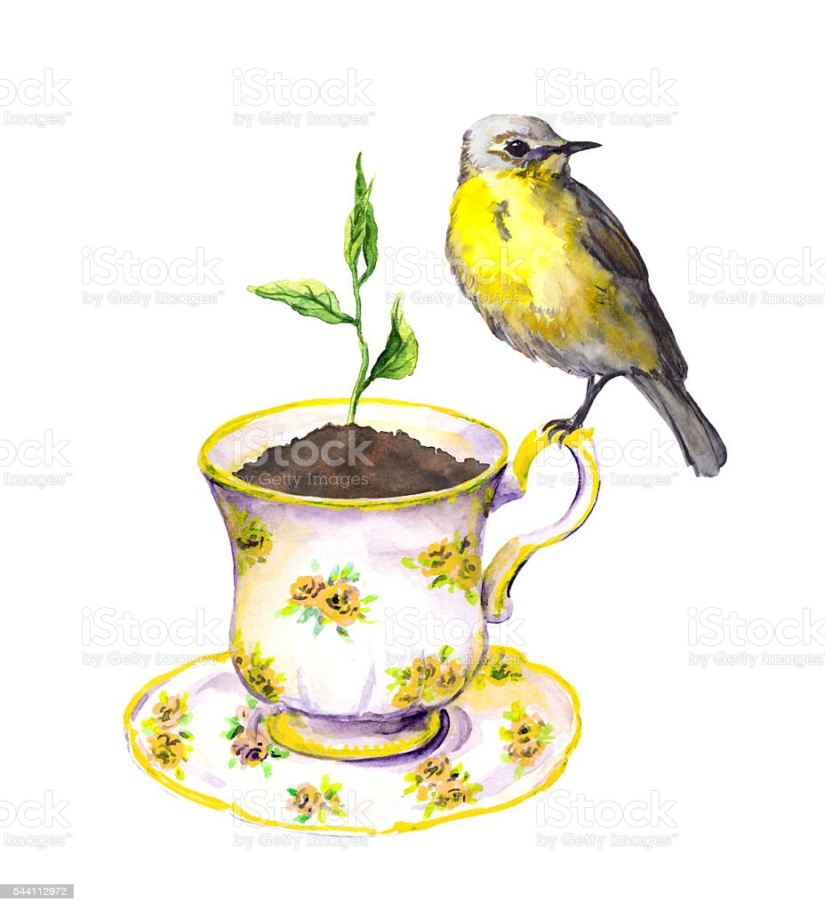 Bird, spring sprout - green growing plant in teacup. Watercolor vector art illustration