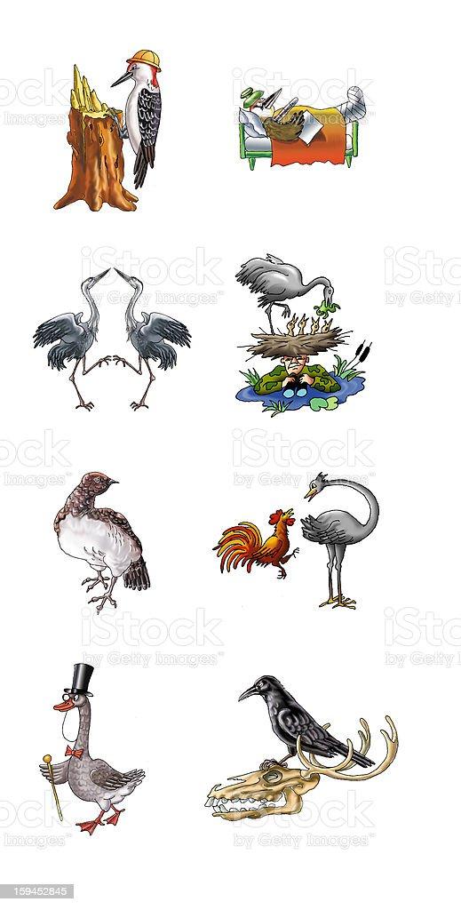 birds royalty-free stock vector art