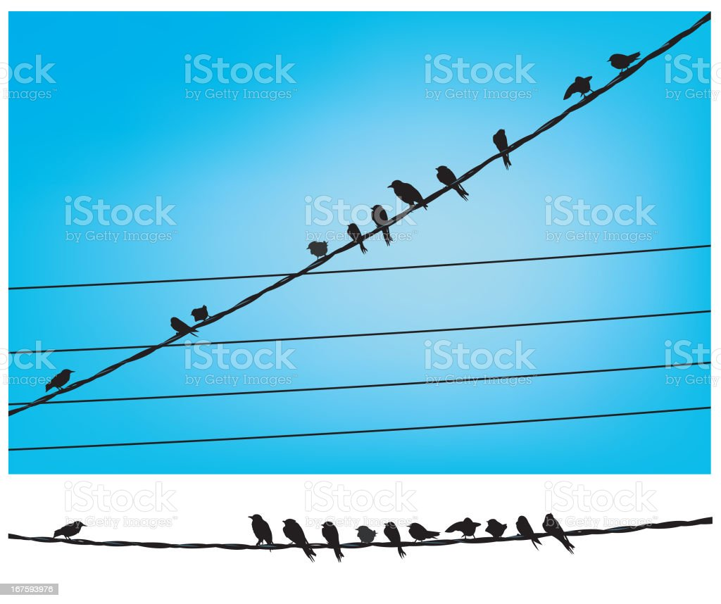 Birds on a Telephone Wire vector art illustration