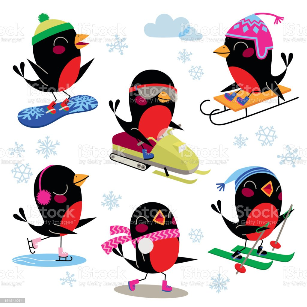 Birds Winter Sport. vector art illustration