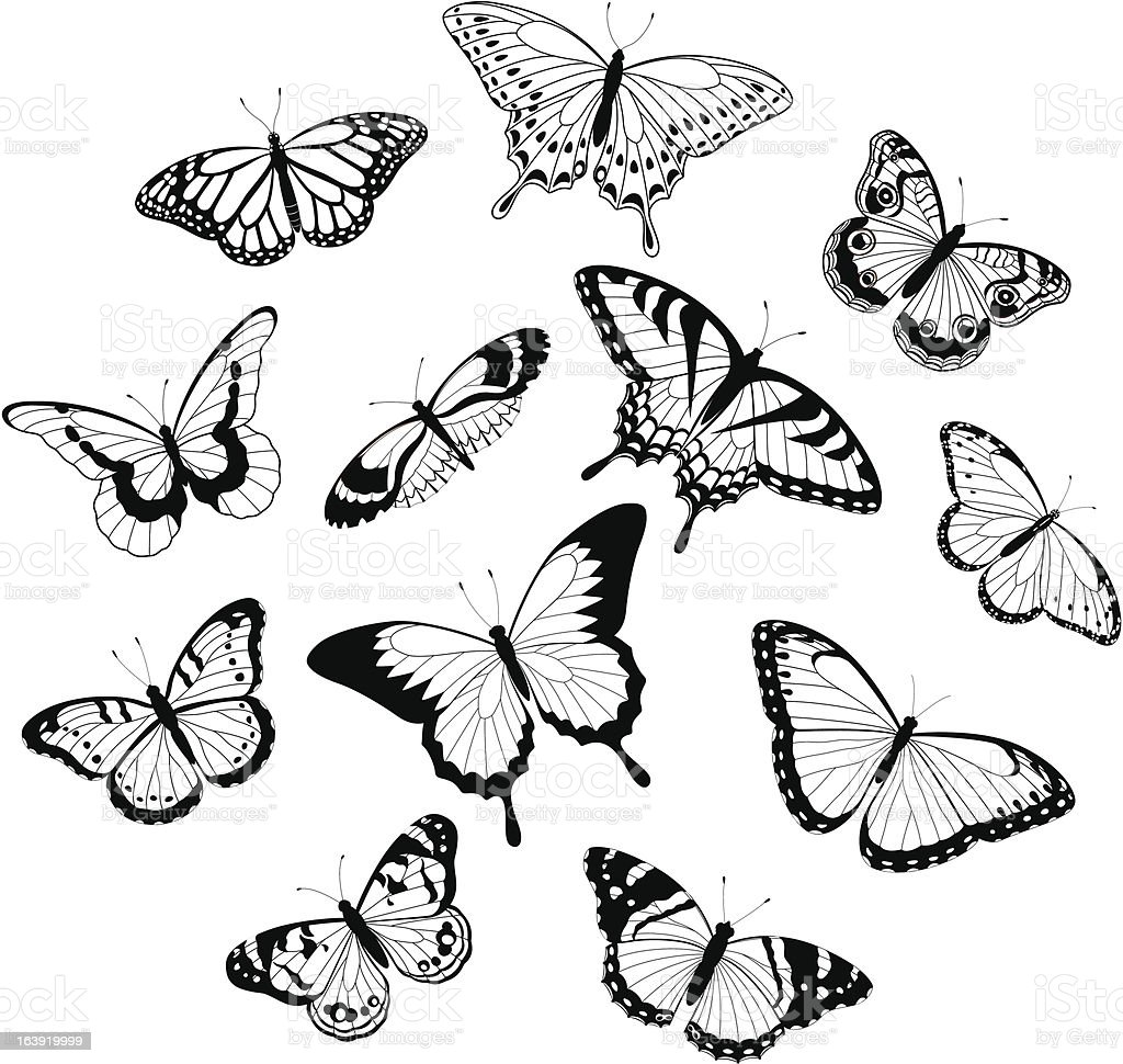 Black and white butterflies royalty-free stock vector art