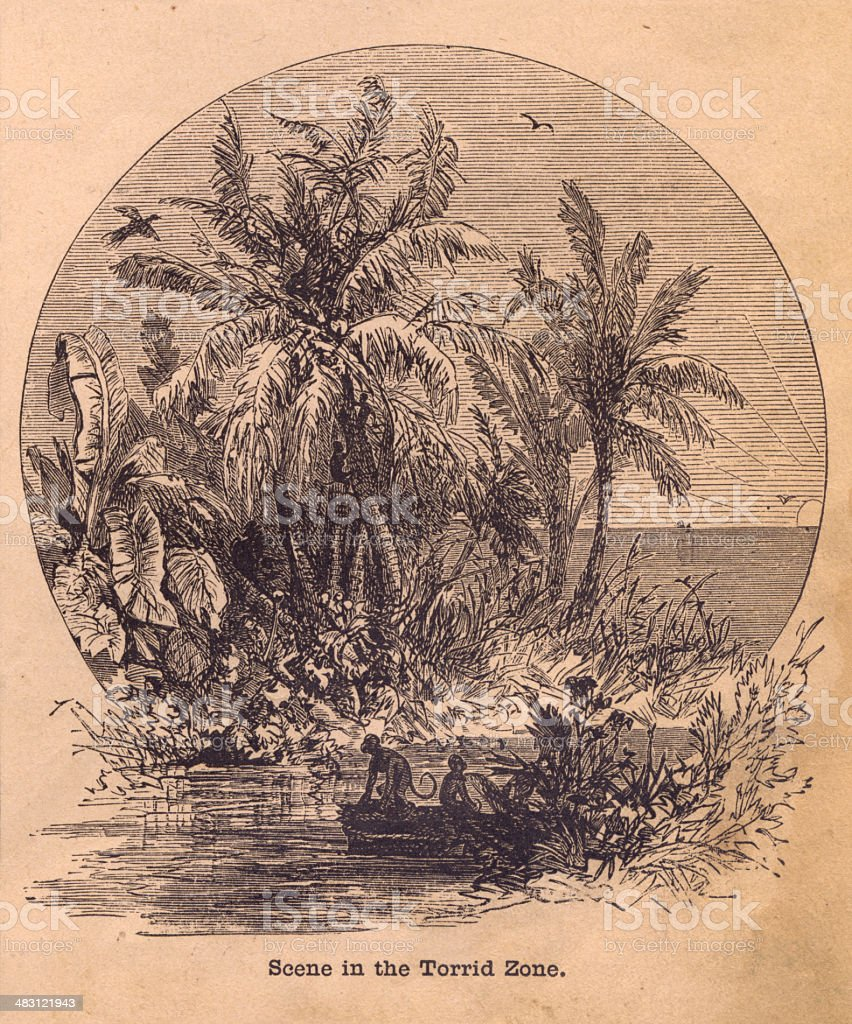 Black and White Illustration of Scene in Torrid Zone, 1800's vector art illustration