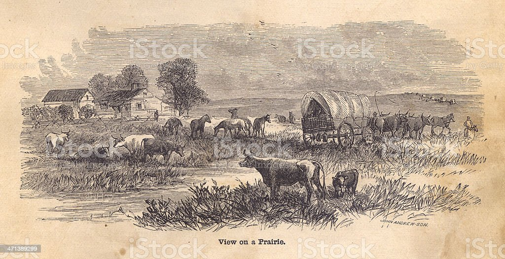 Black and White Illustration of View on Prairie, From 1800s vector art illustration