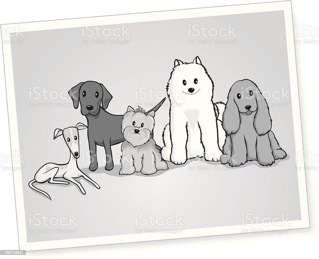 Black and White Portrait of Dogs vector art illustration
