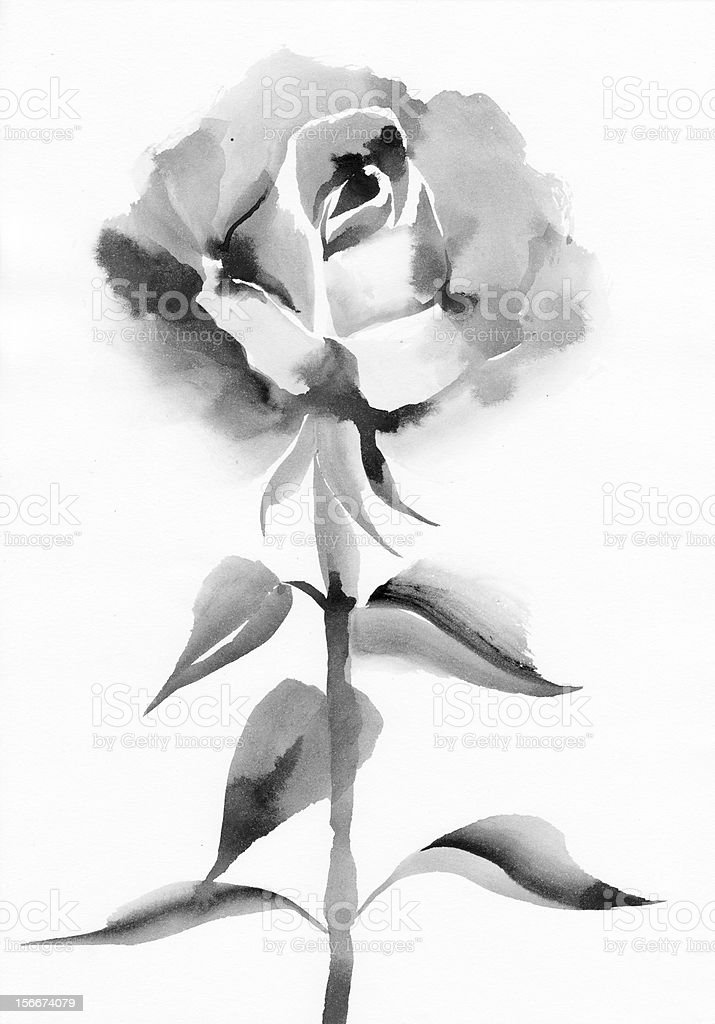 Black rose royalty-free stock vector art